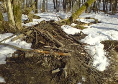 Hráz – Český les